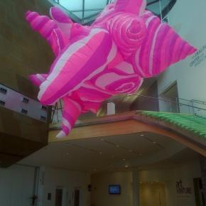 01-hot-pink-taubman-museum-va-anne-ferrer