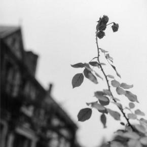 Bernard Plossu, la poétique de l'espace, Giverny, musée des impressionnismes, du 08/06/ au 31/10/12