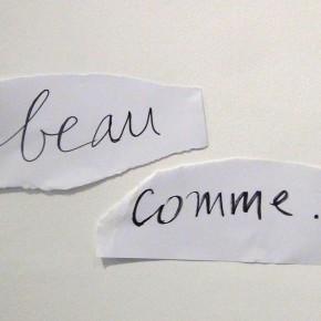 Agnès Varda, Paris, galerie Nathalie Obadia, du 08/02 au 29/03/14