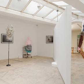 Martin Kersels par Alexandra Fau, Paris, galerie Georges-Philippe & Nathalie Vallois, du 14/03 au 26/04/14