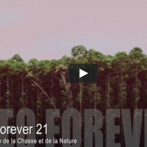 VIDEO FOREVER 21